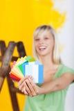 Dipinga le scelte di colore Immagini Stock
