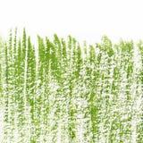Dipinto nell'erba verde di gouache su un fondo bianco Immagini Stock Libere da Diritti