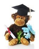 Diplômé de singe Photographie stock