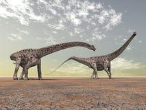 diplodocus δεινοσαύρων Στοκ Φωτογραφία