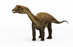 Diplodocus Dinosaur Royalty Free Stock Images