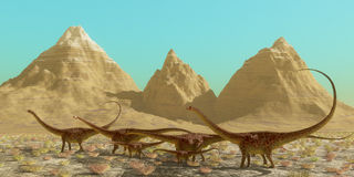 Diplodocus Dinosaur Herd Stock Photos