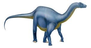 Diplodocus dinosaur Stock Image