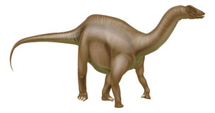 Diplodocus dinosaur Royalty Free Stock Image