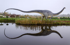 Diplodocus dinosaur with water reflection. LEBA, POLAND- OCTOBER 01: Diplodocus dinosaur model with water reflection in open park in October 01, 2011, in Leba Stock Photo