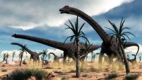 Diplodocus dinosaurs herd in the desert - 3D Stock Images