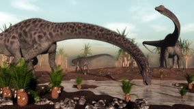 Diplodocus dinosaurs herd going to drink - 3D Stock Photo