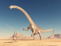 Diplodocus do dinossauro no deserto ilustração do vetor