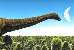 Diplodocus enorme no pantanal, ilustração 3d Imagens de Stock