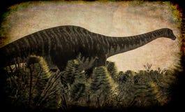 Diplodocus enorme in zona umida, illustrazione 3d Immagine Stock