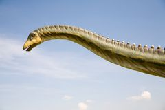 Diplodocus longus neck Royalty Free Stock Images