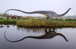 Diplodocusdinosaurie med vattenreflexion Arkivfoto
