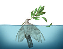 Diplomatic Crisis. Concept as a peace dove drowning in water trying to hold on to an olive branch as an urgency symbol for failed diplomacy to negotiate an end stock illustration