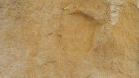Diplopora-Dolomit-Gesteinsschichten Stift für Skala Lizenzfreies Stockbild