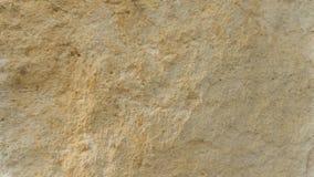 Diplopora-Dolomit-Gesteinsschichten Stift für Skala Lizenzfreie Stockfotos