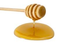 dipper μέλι Στοκ Φωτογραφία