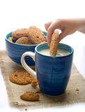 Dipping  cookie  on mug of milk Royalty Free Stock Image