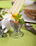 Dipping roasted toast in soft boiled egg Royalty Free Stock Image