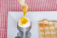Dipping toast in soft boiled egg focus on egg Royalty Free Stock Photos