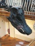 Dippy dinosaur 1 zdjęcia royalty free