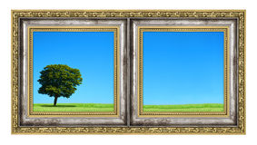 Diptych with landscape Royalty Free Stock Photos