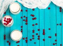 Diríjase el yogur hecho con las bayas congeladas de la pasa roja Fotografía de archivo