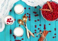 Diríjase el yogur hecho con las bayas congeladas de la pasa roja Fotografía de archivo libre de regalías
