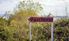 Dirección del caballo Fotos de archivo libres de regalías