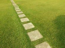 Dirección del camino del azulejo a través de la hierba fresca del corte Fotografía de archivo