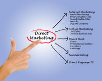 Direct marketing. Presenting diagram of Direct marketing Stock Photography