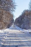 The direct road goes into the distance in the frosty winter landscape.  royalty free stock photography