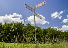Direction. Green Grass (field) - trees on horizon - cloudy sky Stock Photo