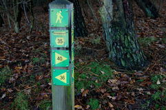 Direction marker forest Stock Photography