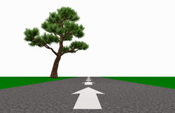 Direction and orientation to success. Arrow on the road indicates the direction of the horizon past the lone tree 3d illustration Royalty Free Stock Image