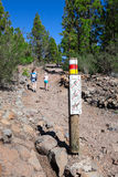 Direction sign is on stone trail in evergreen woods in mountains of Teno national park. Volcanic pathway to Lunar Landscape with h Royalty Free Stock Photo