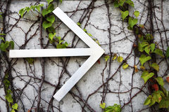 Directional arrow sign. An arrow sign pointing to the right sign among vines on a wall Royalty Free Stock Images