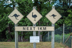 Directional sign pole at Zoo for Kangaroo and Ostrich Royalty Free Stock Images