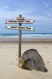 Directional signs Stock Photos