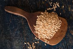 Oat groats on a wooden paddle. Directly above a wood paddle with a heap of oat groats stock photos