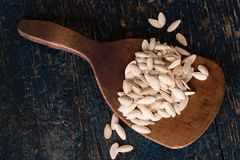 Pumpkin seeds on a wooden paddle Royalty Free Stock Photo