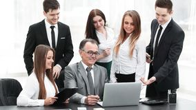 Director and business team looking at laptop screen. Office weekdays royalty free stock image