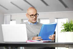 Director working on business report Royalty Free Stock Photos