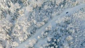 Direkt über großem Wald- und fahrenauto auf Straße im kalten Winter stock footage