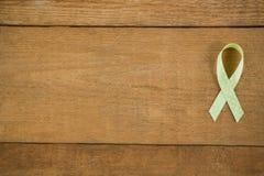 Direkt ovanför sikt av det prickiga gröna lymfkörtelcancermedvetenhetbandet Royaltyfri Bild