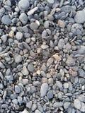 Direkt ovannämnt skott av kiselstenar på stranden Arkivbild