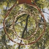 Diretamente abaixo do tiro de uma aro de basquetebol no fundo verde das folhas imagens de stock royalty free