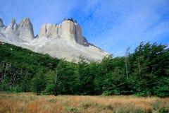 Diretor de Cuerno e o Valle Frances, parque nacional de Torres del Paine Patagonia, o Chile imagens de stock royalty free