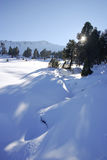 Direzioni della neve in montagne delle alpi Fotografia Stock