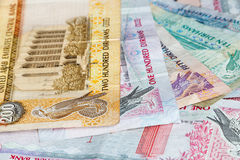 Dirhams. Close up of UAE banknotes: dirhams Royalty Free Stock Photos