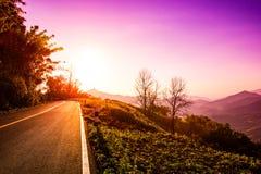 Diriga e viaggi durante l'alba, fondo del paesaggio della natura Fotografia Stock